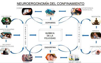 NEUROERGONOMÍA DEL CONFINAMIENTO